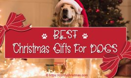 Best Christmas Gifts For Dogs – 2018 Holiday Gift Guide For Our Canine Friends